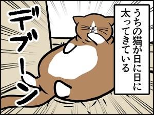 デブ猫.jpg